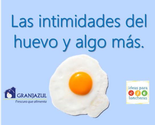 banner huevo